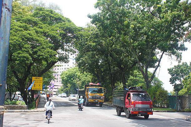 交通量の多い道